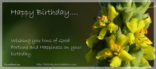 Beautiful Happy Birthday Yellow Flower Card Wishing You Tons Of