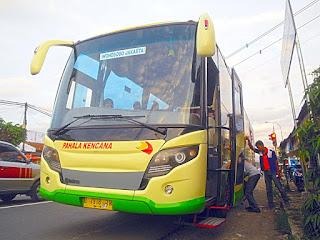 Gambar bus Pahala Kencana Terbaru Scorpion King Karoseri Tentrem 2016 Credit Youtub