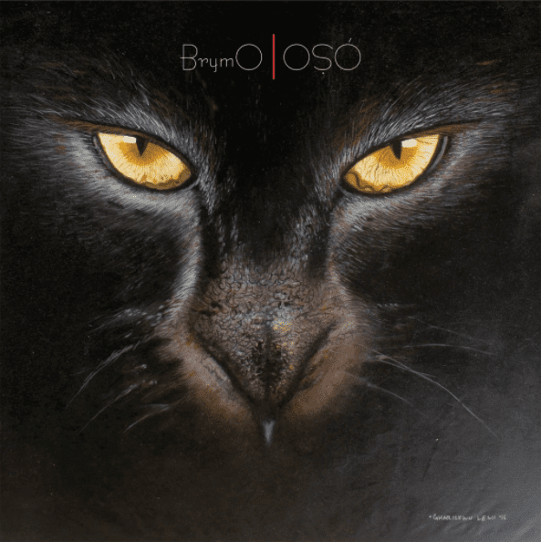 Brymo – Patience and Goodluck [MUSIC]