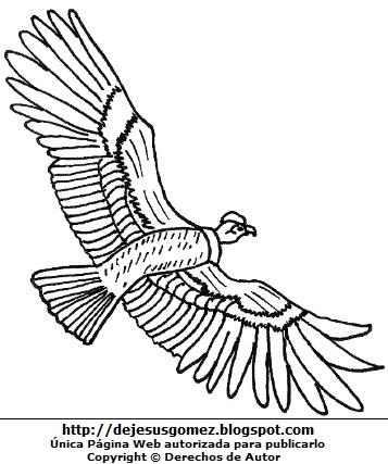 Dibujo del cóndor volando con alas abiertas o extendidas para colorear o pintar. Dibujo de cóndor de Jesus Gómez
