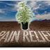 Study: Cannabis Effective At Treating Symptoms Of Fibromyalgia