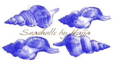 pinceles de conchas en alta resolucion