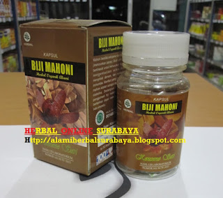 Jual Kapsul Biji Mahoni herbal untuk sakit Malaria