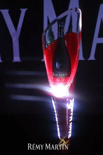 1 Photos from At The Club With Remy Martin party