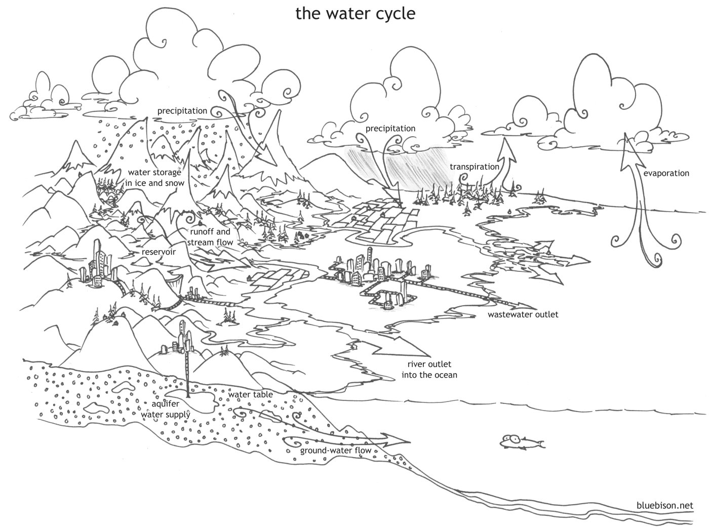 Lunamama The Water Cycle Unit Study