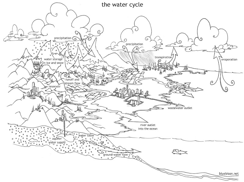 Coloring Pages For Water Cycle Top