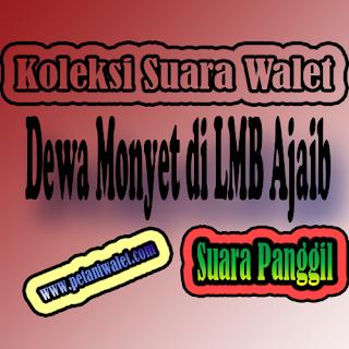 SP Dewa Monyet di LMB Ajaib