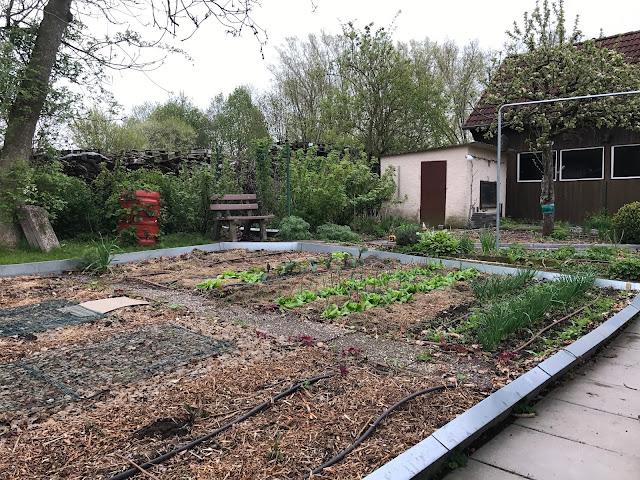 der noch kahle Gemüsegarten Ende April  (c) by Joachim Wenk