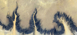Stone aerial roots, fantasy desert landscape from the air,abstract bird's eye view photograph of African deserts, landscape eroded by water