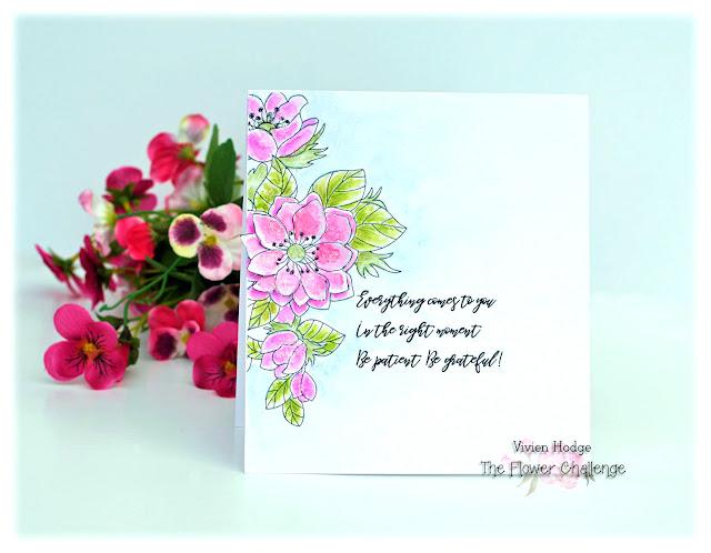 Anenome, Flower Challege, CAS