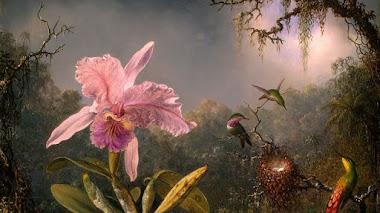 Orquídeas y colibríes con Martin Johnson Heade