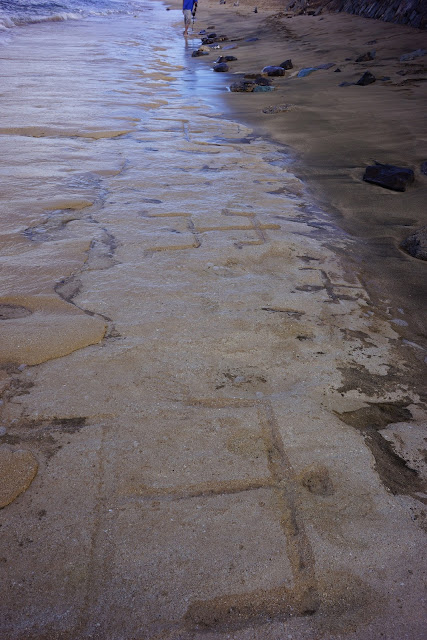 Large petroglyphs discovered on Hawaii Beach