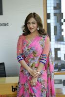 Angela Krislinzki Rogue Movie Fame Telugu Actress in Saree Backless Choli 110.JPG