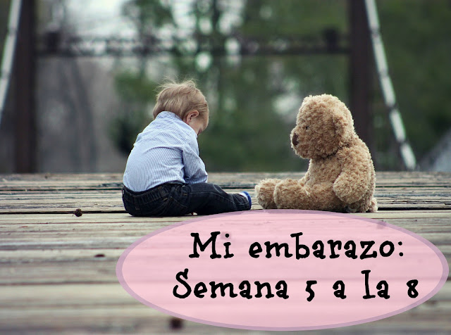 embarazo semana 5 a 8 by sexy and mum