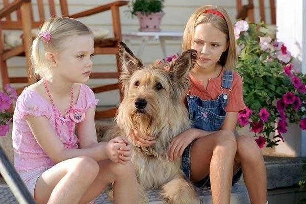 Image result for winn dixie dog