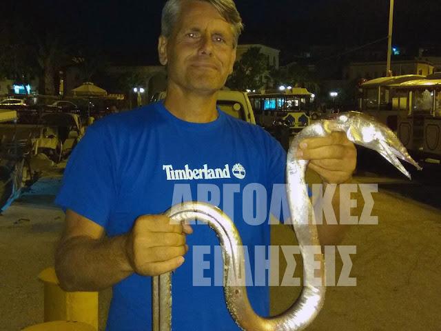 """Τεράστιο """"ψάρι -φίδι"""" αλίευσε ψαράς στο Ναύπλιο"""