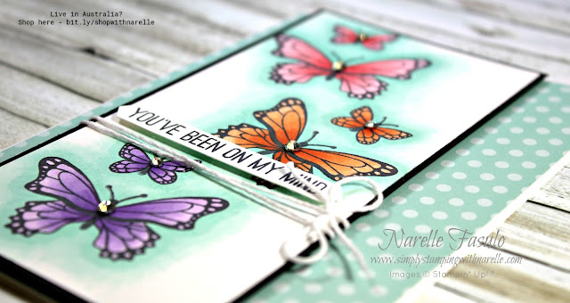 The possibilities are endless with the Butterfly Gala stamp set. See the full range of gorgeous products in my online store - http://bit.ly/shopwithnarelle