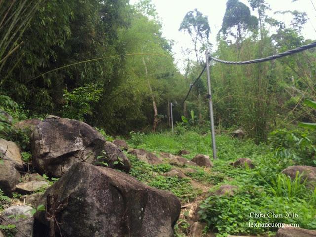 Đường cột điện lên núi Chứa Chan có khoảng 125 cột