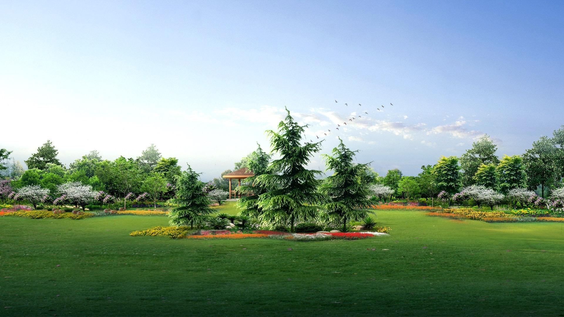 green garden hd wallpapers sky nature definition