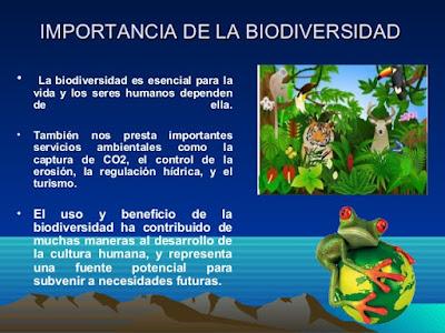 ¿Cual es la importancia de la Biodiversidad?