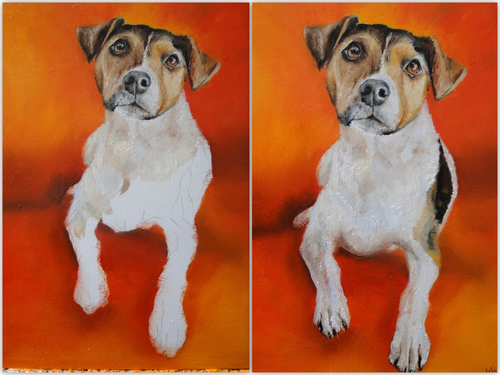 work in progress photos, jack russell oil painting, a pet portrait by karen, animal artist