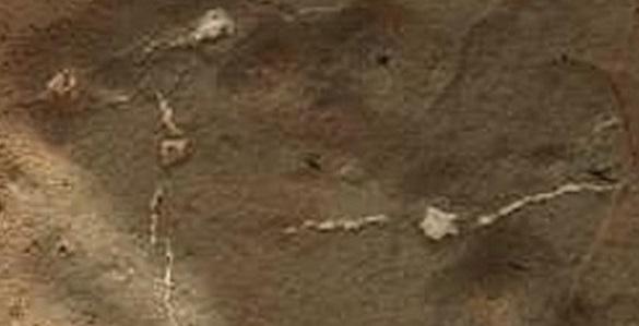 Gambar 9: Spesimen Mars menyerupai miselium jamur