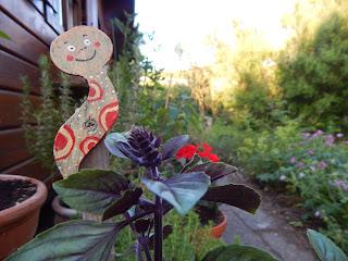 aus dem bioveganen Garten
