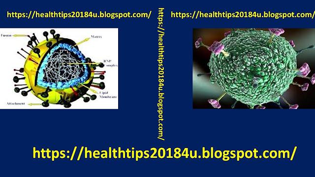 Suspected Case of Nipah Virus in Goa