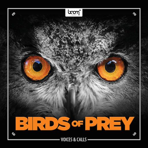 Boom Library – Birds of Prey [WAV][GraphixTree]