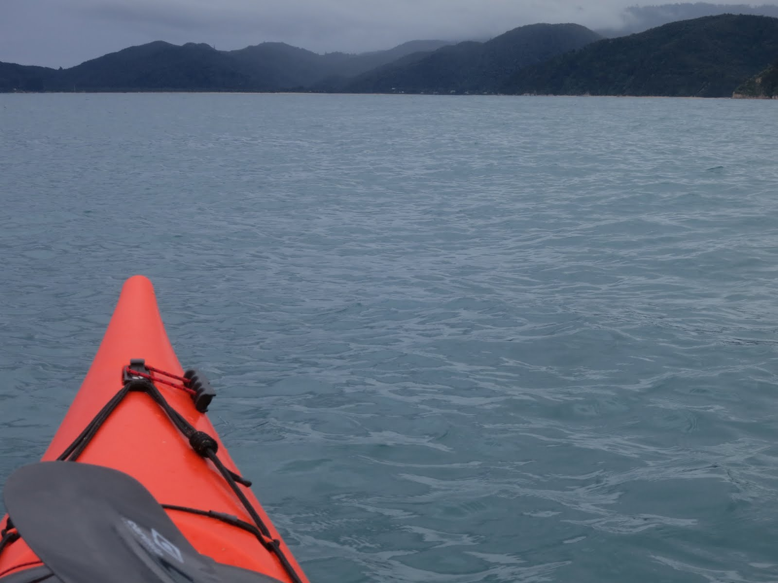 The abel tasman national park located in the top of the south island - Faffling Summer Break