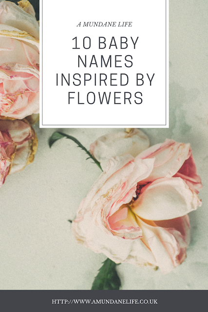 pinnable pinterest image with post title 10 baby names inspired by flowers