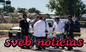 Hallan 10 cuerpos en una barranca entre Colima y Jalisco