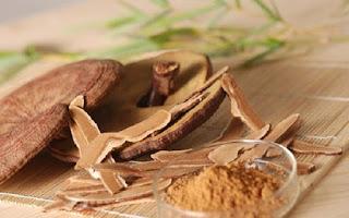 Bột nấm linh chi