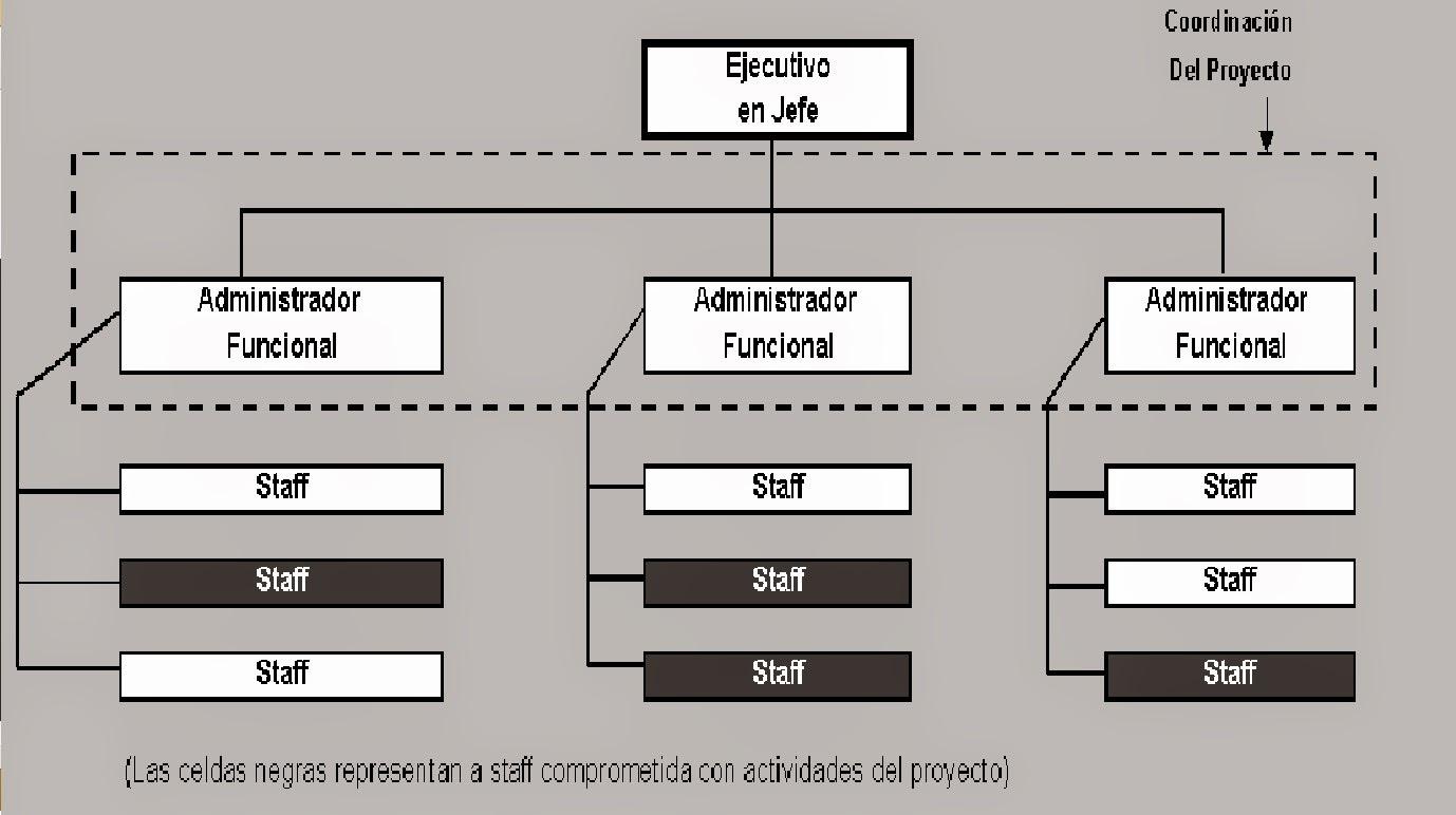 Pmi Estructura Organizacional