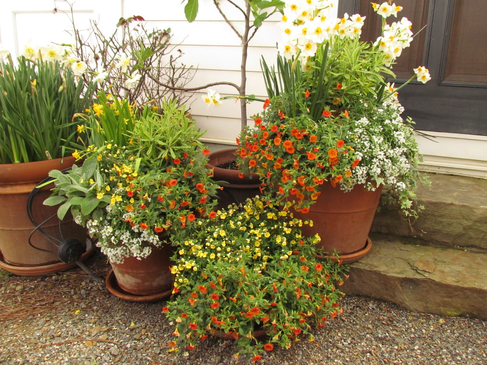 Moss Mountain Farm – An Early Spring Visit to P Allen Smith\'s Garden ...