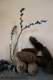 Pussywillow or Topini branches with pinecones and charcoal for drawing