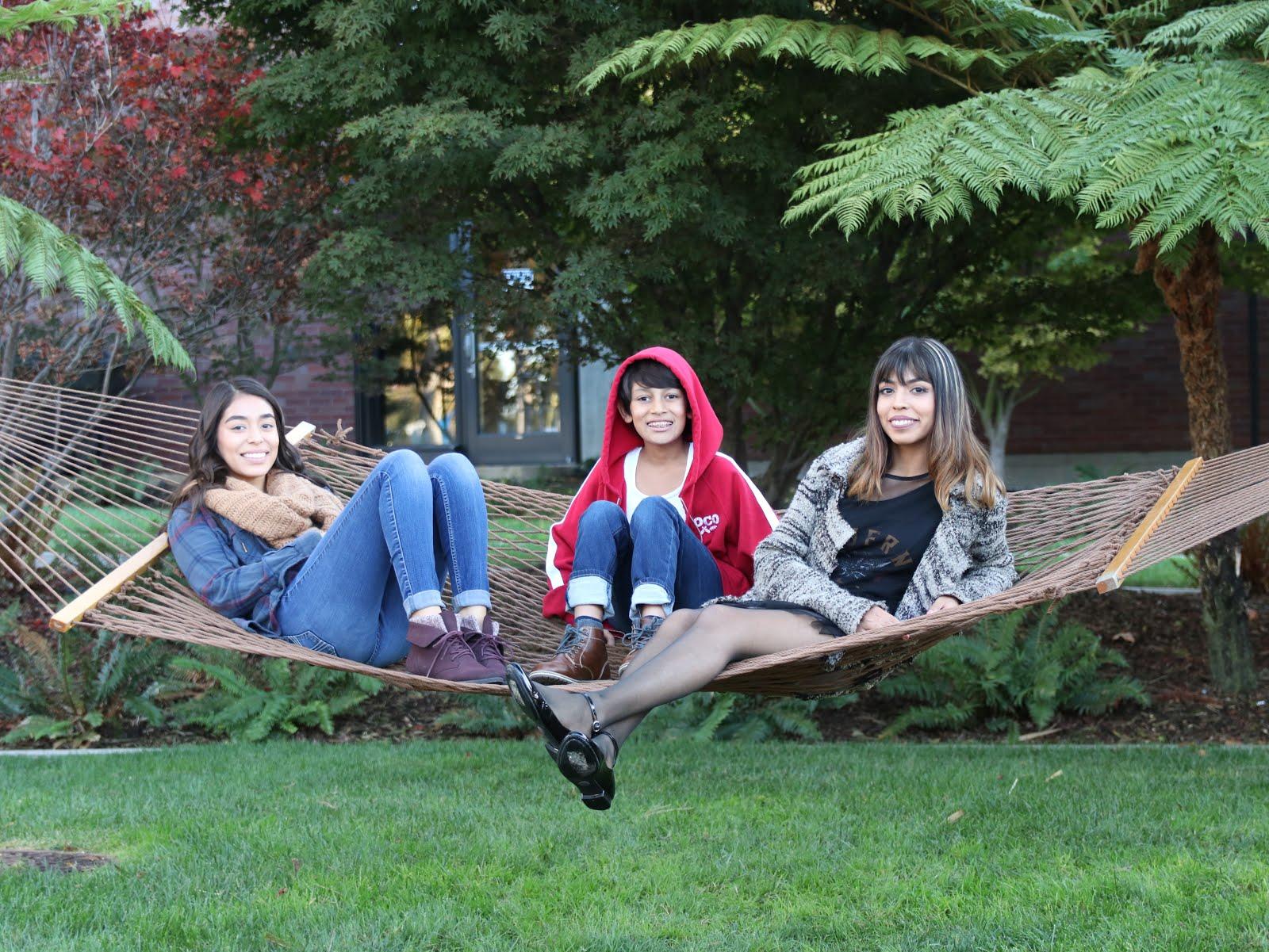pixar studios hammock