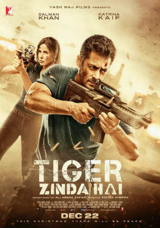Tiger Zinda Hai 2017 BluRay 450Mb Full Hindi Movie Download 480p Watch Online Free bolly4u
