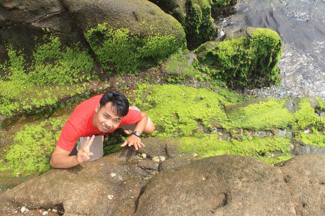 karang pantai wedhi ombo gungung kidul jogja