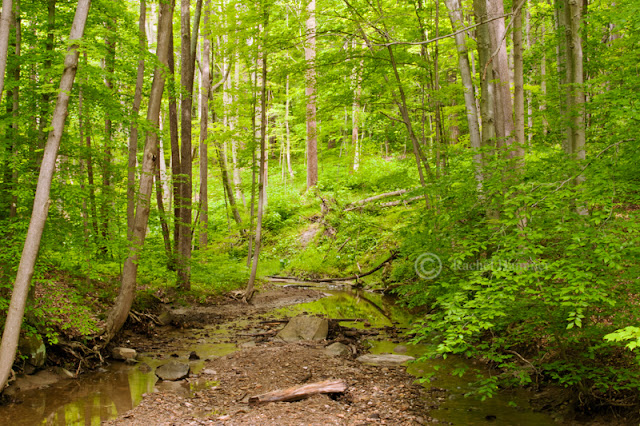 best trails cleveland