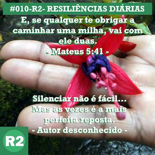 #010-R2- RESILIÊNCIAS 2
