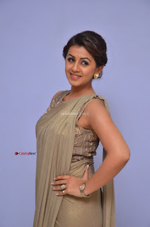 Nikki Galrani in Saree 084.JPG