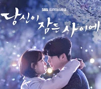 Download Ost While You Were Sleeping