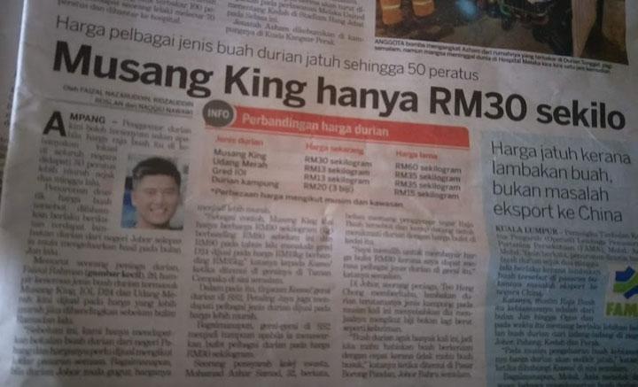 Buah durian Musang King murah