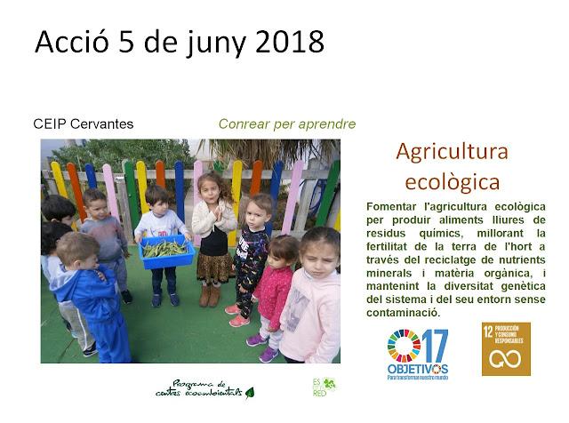http://centresecoambientals.blogspot.com.es/2018/05/muntatges-presentats-pel-dia-mundial.html