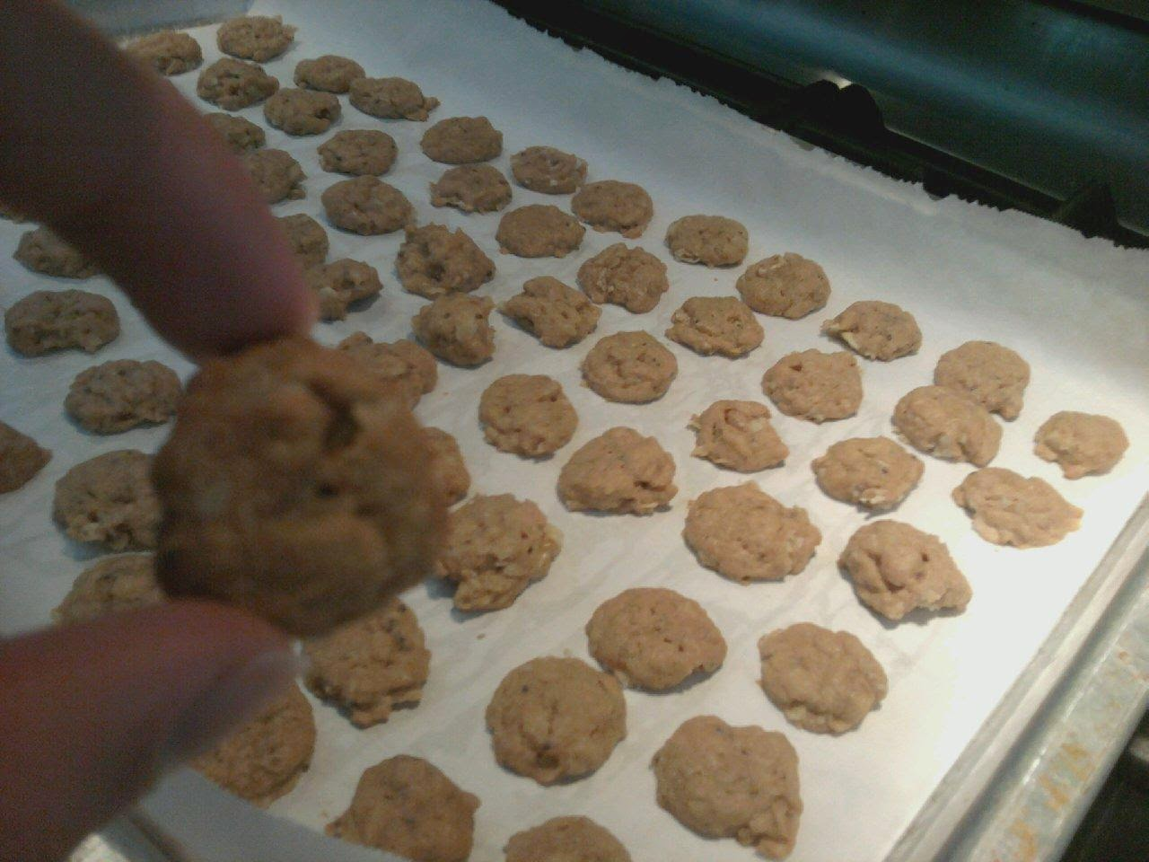 my own peanut butter cookie crisp cereal