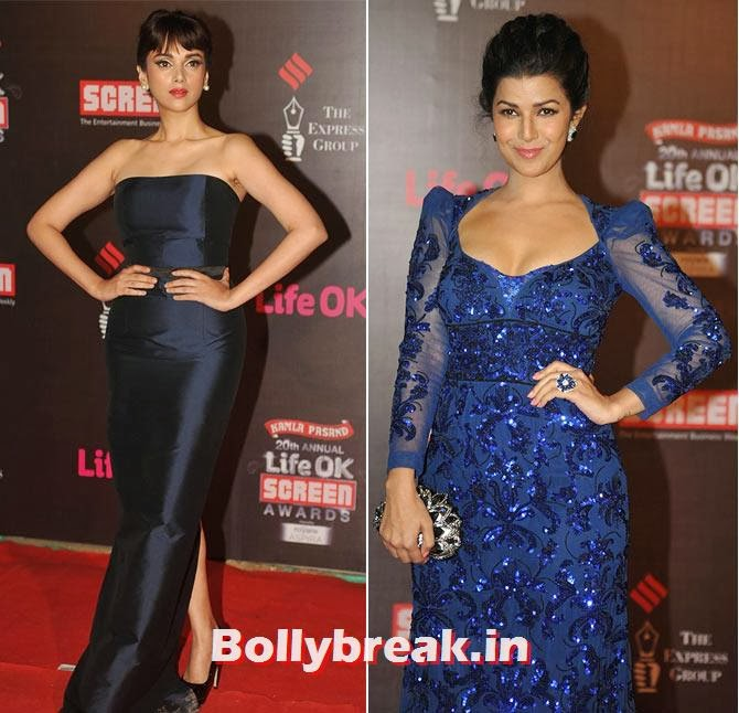 Aditi Rao Hydari and Nimrit Kaur, Life Ok Screen Awards 2014 Red Carpet Photos
