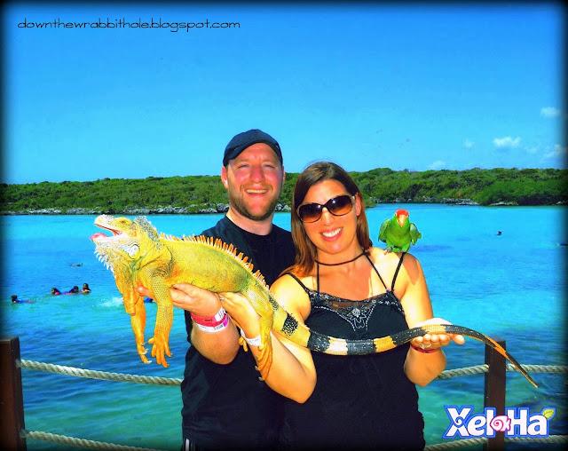Xel-Ha park, Akumal water park, things to do in Mexico, Marti Ingram