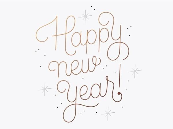 Mutlu Yıllar #2017 - Leopar Delisi