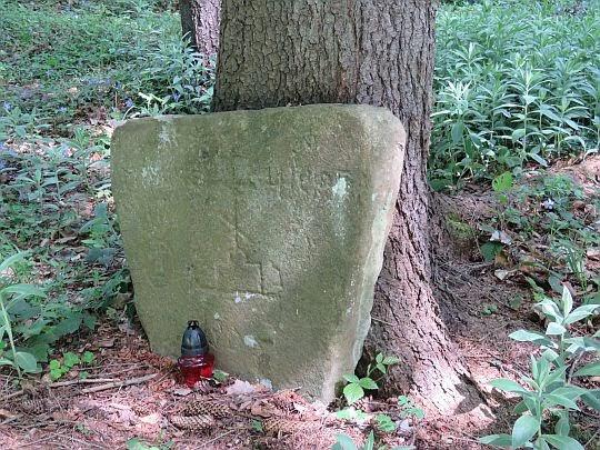 Cmentarz wsi Świerzowa Ruska.